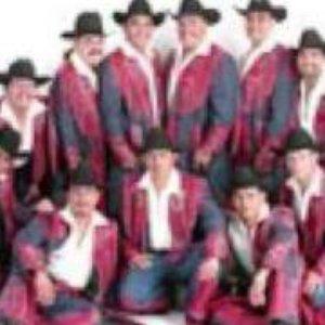 Imagem de 'Banda Machos'