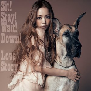 Sit! Stay! Wait! Down! / Love Story