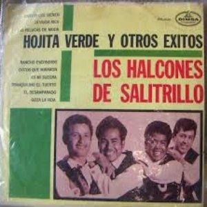 Avatar for Los Halcones De Salitrillo