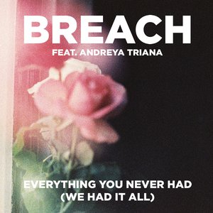 Everything You Never Had (We Had It All) (feat. Andreya Triana)