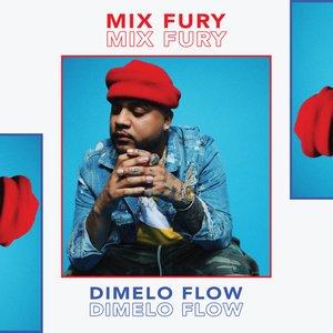 Mix Fury (DJ Mix)