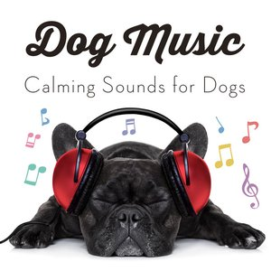 Dog Music - Calming Songs for Dogs