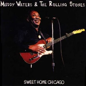 Avatar for The Rolling Stones & Muddy Waters