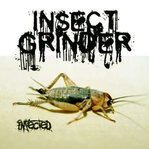 Avatar de Insect Grinder