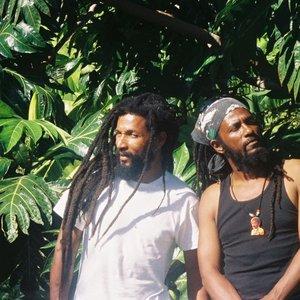 Avatar for Reggae Bubblers