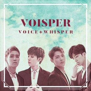 Voice + Whisper