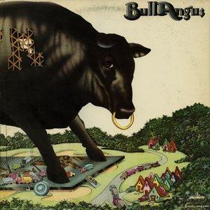 Bull Angus