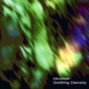 Settling Density