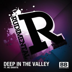 Deep in the Valley (feat. MC Shantie)