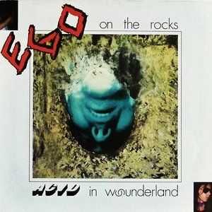 Acid in Wounderland