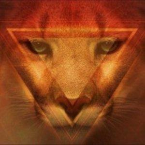Avatar de Cougar Synth