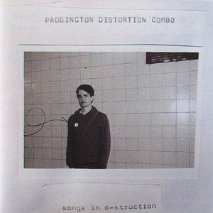 Songs in d-struction