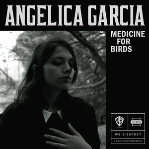 Medicine for Birds