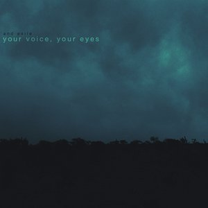 Your Voice, Your Eyes