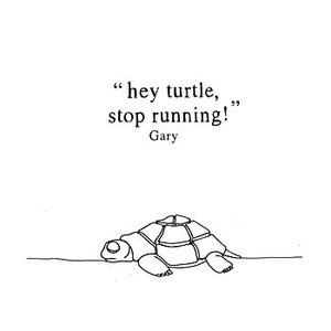 Hey Turtle, Stop Running!