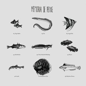 Memória De Peixe