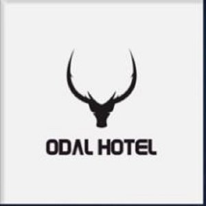 Avatar for ODAL HOTEL