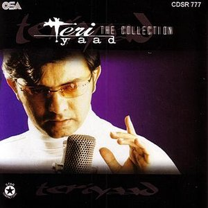Teri Yaad -The Collection
