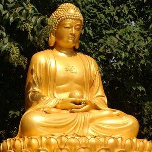 Avatar for Buddha Virtue