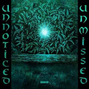 Unnoticed and Unmissed