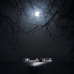 Аватар для Moonlit Wake