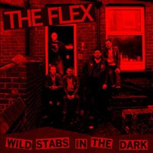 Wild Stabs in the Dark