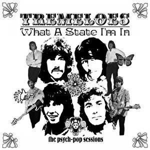What A State I'm In: The Psych-Pop Sessions