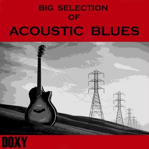 Big Selection of Acoustic Blues (Doxy Collection)