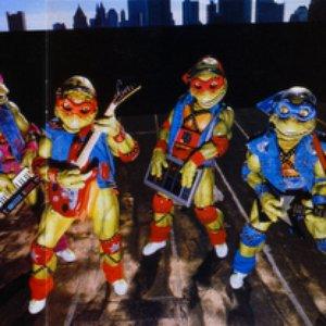 Avatar for Teenage Mutant Ninja Turtles