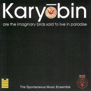Karyobin
