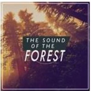 The Sound of the Forest