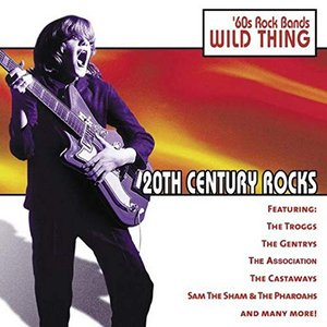 20th Century Rocks - 60's Rock Bands/Wild Thing
