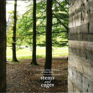 Stems And Cages