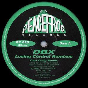 losing control remixes