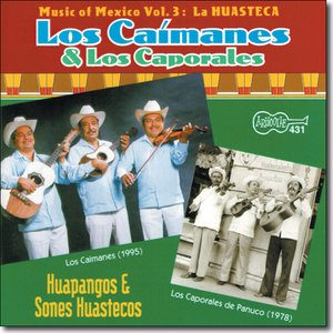Avatar de Los Caporales de Panuco