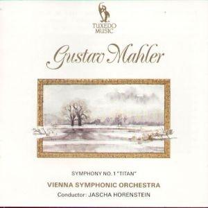 Symphony No. 1 in D