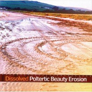 Poltertic Beauty Erosion EP