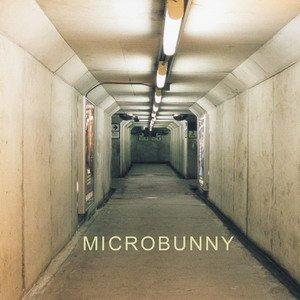 Microbunny