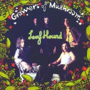 Growers Of Mushrooms