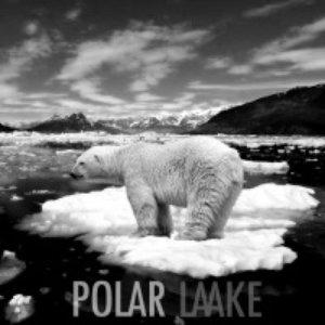 Аватар для Polar Laake