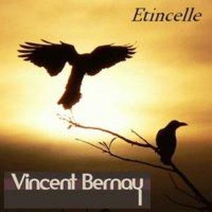 Avatar for Vincent Bernay