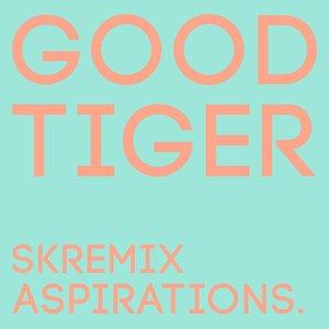 Aspirations (Skremix)