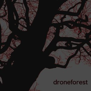 Avatar for Drone Forest