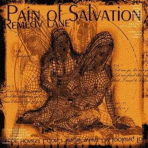 Discovering Pain of Salvation