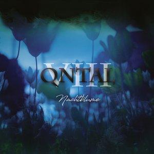 VIII - Nachtblume