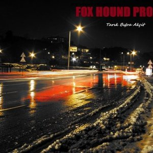 Image for 'FOX HOUND PROJECT VOL.I'