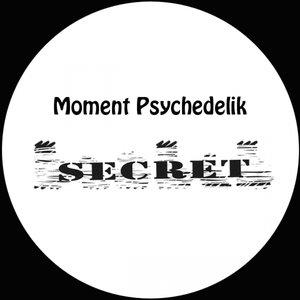 Moment Psychedelik