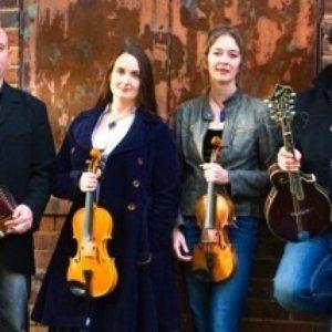 Avatar for The Melrose Quartet