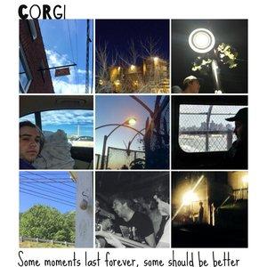 Avatar for Corgi