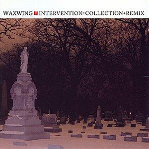 Intervention: Collection + Remix